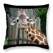 Giraffe-really-09025 Throw Pillow