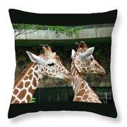 Giraffes-09023 Throw Pillow