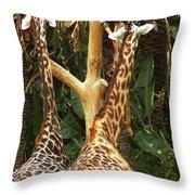 Giraffes In Love Throw Pillow