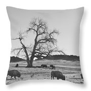 Give Me A Home Where The Buffalo Roam Bw Throw Pillow