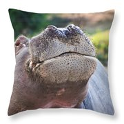 Give Me A Kiss Hippo Throw Pillow