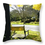 Giving Nature Direction  Throw Pillow