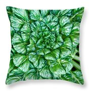 Glabrous Leaves Throw Pillow