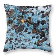 Glacial Gold Throw Pillow