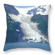 Glacial Spillover Throw Pillow