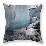 Glacial Waters Throw Pillow