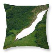 Glacier 13 Throw Pillow