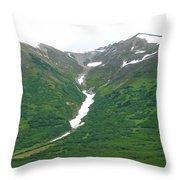 Glacier 14 Throw Pillow