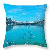 Glacier Bay National Park-alaska Throw Pillow