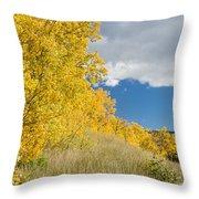 Glacier Fall Color Ridge Throw Pillow