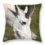 Glacier Goat Throw Pillow