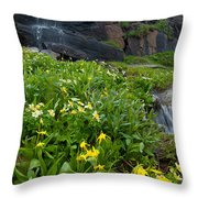Glacier Lilies And Globeflower Beside A Mountain Stream Throw Pillow