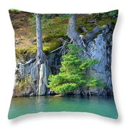 Glacier Water 2 Throw Pillow