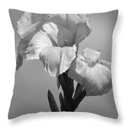 Gladiola In Black And White Throw Pillow