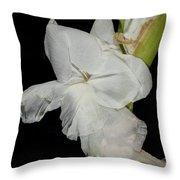 Gladiolus Past Time Throw Pillow