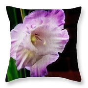 Gladiolus - Summer Beauty Throw Pillow