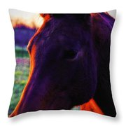 Glamour Shot Throw Pillow