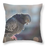 Glance From Above Throw Pillow