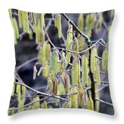 Glance In The Woods Throw Pillow