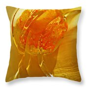 Glass Abstract 581 Throw Pillow