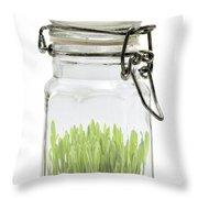 Glass Jar Throw Pillow