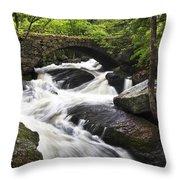 Gleason Falls Throw Pillow