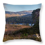 Glen Affric Panorama II Throw Pillow