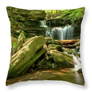 Glen Leigh Cascades Throw Pillow