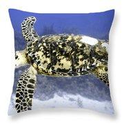 Gliding Sea Turtle Throw Pillow