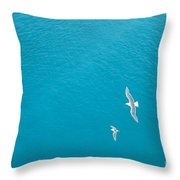 Gliding Seagulls Throw Pillow