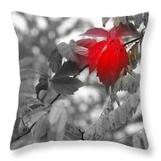 Glimpse Of Autumn Red Throw Pillow