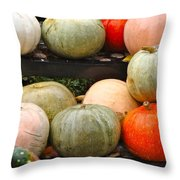 Glistening Gourds Throw Pillow