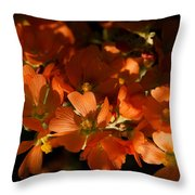 Globe-mallow Blooms  Throw Pillow