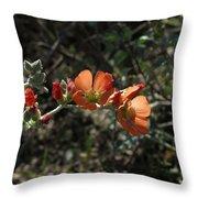 Globemallow Throw Pillow