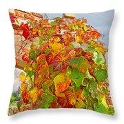 Glorious Autumn Leaves Throw Pillow