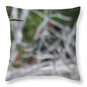 Glorious Day Throw Pillow