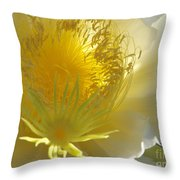 Glorious Dragon Fruit In Full Bloom Throw Pillow