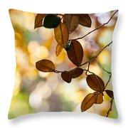 Glorious Foliage. Tree In Pamplemousse Garden 1. Mauritus Throw Pillow