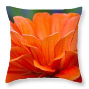 Glorious Orange  Throw Pillow