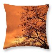 Glorious Silhouettes 1 Throw Pillow