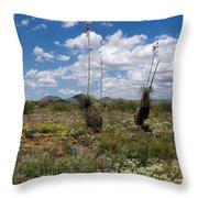 Glorious Spring In The Desert Throw Pillow