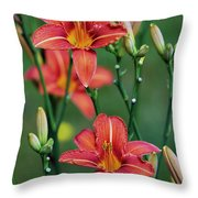 Glory In Unity Throw Pillow