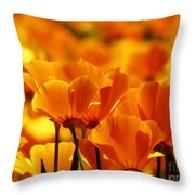 Glory Of Poppies Throw Pillow