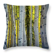 Glowing Aspens Throw Pillow