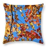 Glowing Autumn Throw Pillow