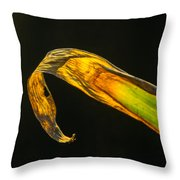 Glowing Corn Leaf Throw Pillow