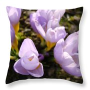 Glowing Floral Art Prints Crocus Flowers Throw Pillow