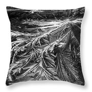 Glowing Ice Throw Pillow