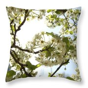 Glowing Petals Throw Pillow