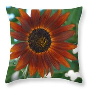 Glowing Red Sunflower Throw Pillow